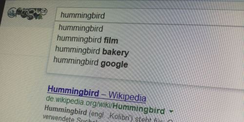Google Hummingbird SEO Trends 2014